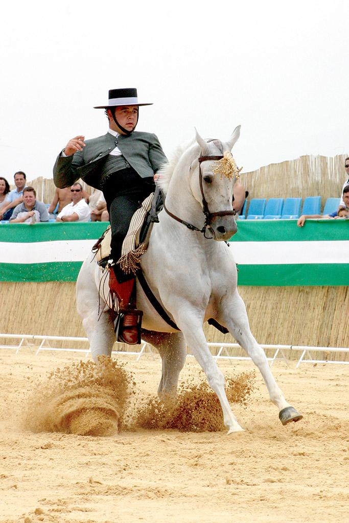 Concurso Nacional de Doma Vaquera