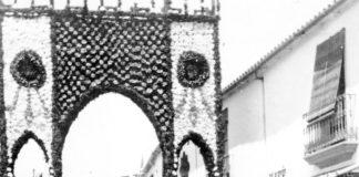 Fonda Campo