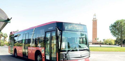 Servicio de Transporte Urbano