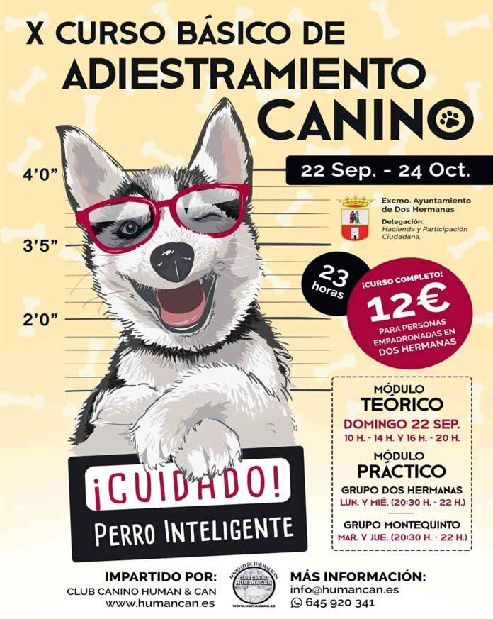 X Curso de Adiestramiento Canino
