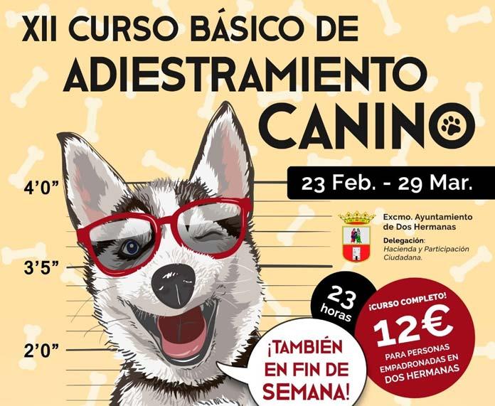 XII Curso Básico de Adiestramiento Canino